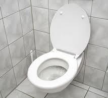 Patricias toilet